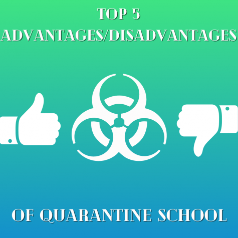 Top 5 Advantages and Disadvantages of Quarantine School